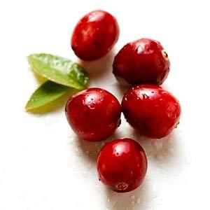 Recipe: Sparkling Cranberry Sangria